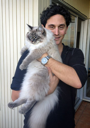 8-month-old Siberian kitten Stoli with Mike