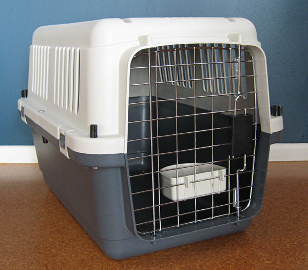 The Best Carrying Cases For Your Cat Seacliffe