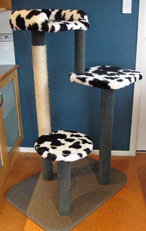 The new 3-level climbing/scratching post from Seacliffe Siberians